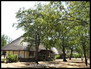 Shingwedzi Rest Camp
