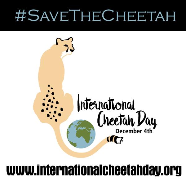 CheetahDay