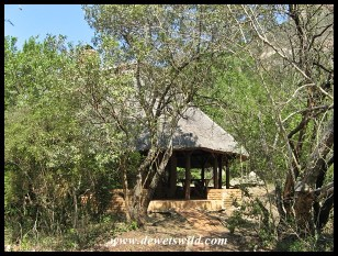 Ntshondwe Unit 15, Ithala Game Reserve, September 2015