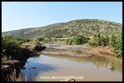 Mankwe stream in Pilanesberg National Park