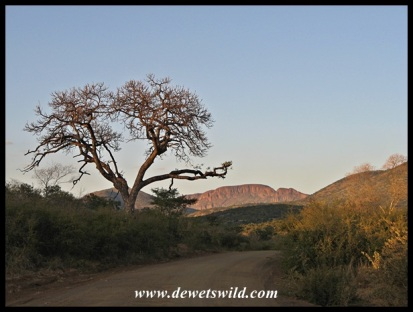 Marakele scenery