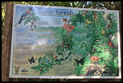 Excellent information boards explain the different habitats