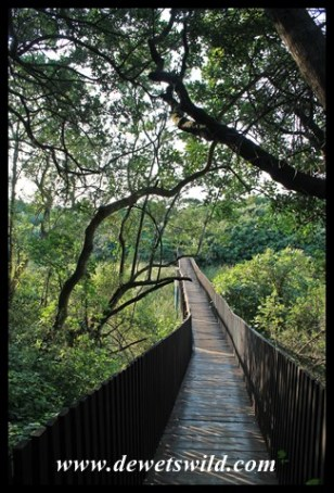 Footbridge across the Siyayi