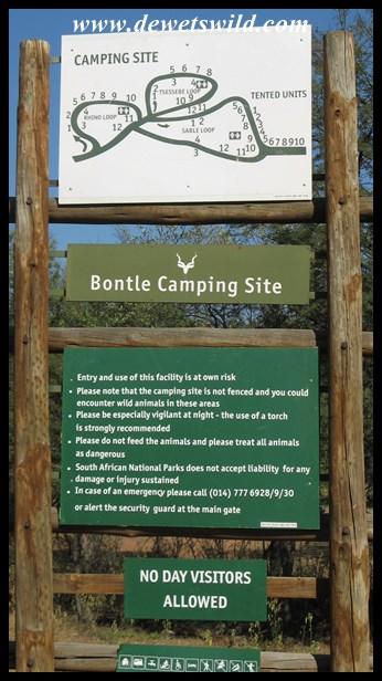 Welcome to Bontle!