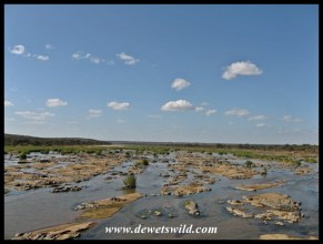 View over the Olifants from the high bridge after the 2012 flood - note how the river bed was scoured clean to the bedrock