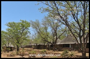 Olifants bungalows