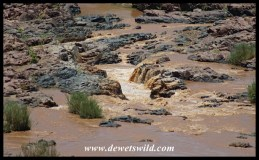 The Olifants makig its way through rugged rocks