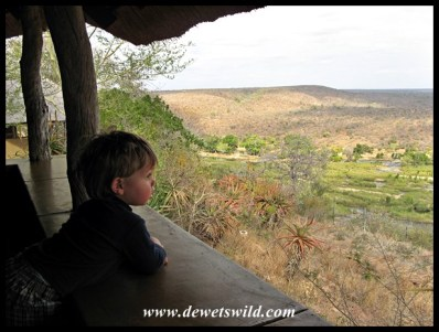 2 Years old: August 2011. Joubert appreciating the view from unit 14 at Olifants