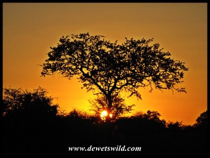 Sunset at Satara