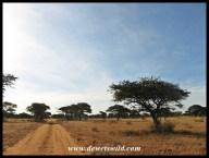 Mokala road