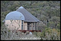 Nyathi Camp unit #3, Addo Elephant Park, October 2016