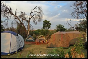 Camping at Kgaswane, October 2016