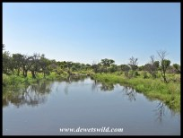 Dinokeng Game Reserve Scenery