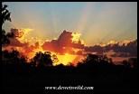 Dinokeng Sunset
