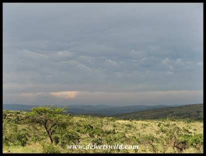 Approaching storm over Imfolozi