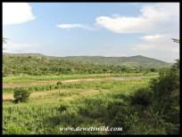Black Umfolozi at Sontuli picnic site