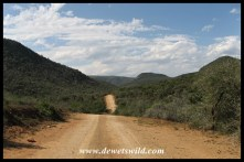 Road to Addo's new Nyathi Camp
