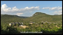 Addo's new Nyathi Camp