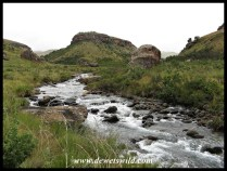 Bushmans River under overcast skies