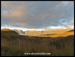 the Drakensberg bathed in a glorious sunrise