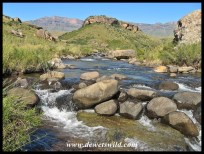 Walking along the Bushmans River