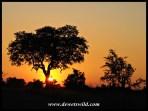 Sunset at Satara