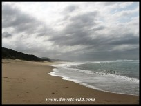 The beach at Cape Vidal