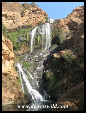 Scenery at Walter Sisulu National Botanical Garden