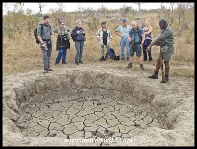 Dried up mud wallow, with Ronnie explaining how every animal that visits helps to enlarge it