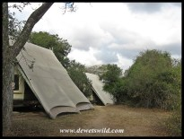 Tents at Napi Wilderness Trail Base Camp