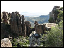 Camdeboo's Valley of Desolation