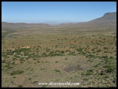 Wide open spaces in the Karoo
