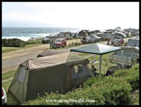 Camping site 50i at Storms River Mouth Camp in Garden Route National Park, December 2017