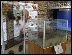 Addo Interpretive Centre