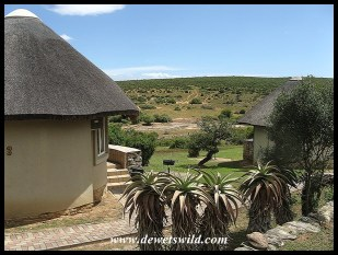 Accommodation at Addo with a terrific view of the floodlit waterhole