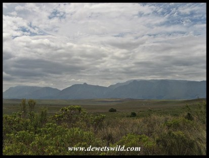 Langeberg range outside the Park