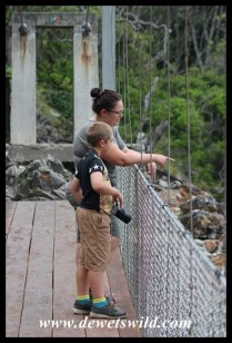 In deep conversation on the suspension bridge at the Storms River Mouth