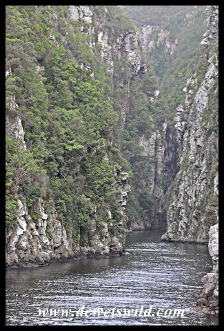Storms River Gorge