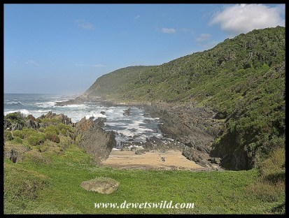 Tsitsikamma coast, Garden Route National Park