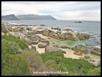 Boulders scenery, Table Mountain National Park