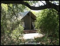 Safari Tent at Lakeview
