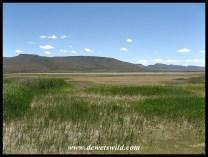 A view over the Nqweba Dam