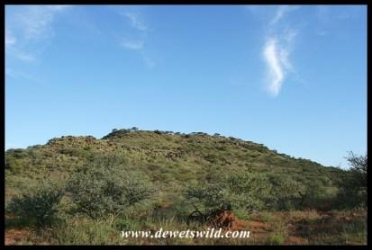 Rugged hills dot the plains in Mokala