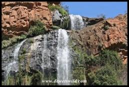 Witpoortjie Falls in the Walter Sisulu Botanical Garden