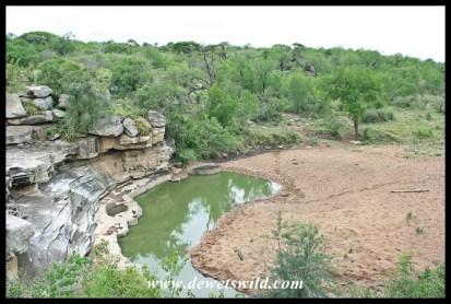 Waterhole at Mphafa Hide