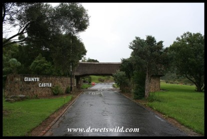 Gate into Giant's Castle Reserve