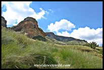 Scenery along the Mushroom Rocks Trail in Golden Gate Highlands National Park