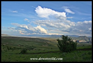 View towards the Drakensberg