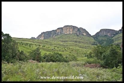 Dooley Mountain