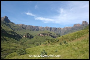 The Amphitheatre from the Tugela Gorge walk